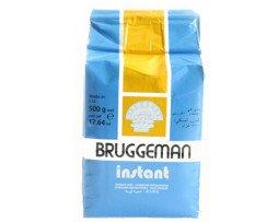 instant gist Bruggeman